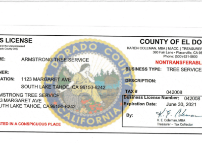 county bus. license